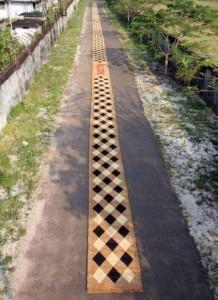 Golden-Book-of-World-Record-Longest-doormat-Travancore-Cocotuft-Ltd-Cherthala-Kerala-India
